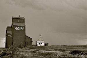 Alberta Prairie